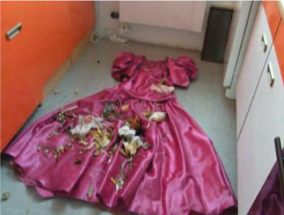 サテンドレスに生ごみをぶちまけろ!光沢スカートがゴミ置き場と化す